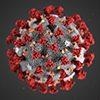 COVID-19 virus under microscope