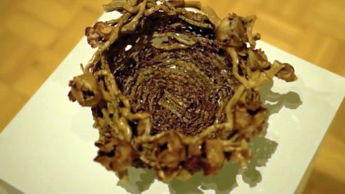 Coco Bowl by Joy Ritchey; Palm weaving